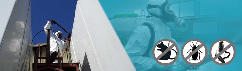 Control de plagas para profesionales y empresas